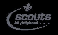 Mi-Voice Scouts Logo